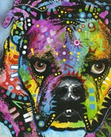 Little Dog Stare Fine Art Print