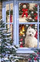 Dog At Window 1 Fine Art Print