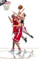 Basket Ball 1 Fine Art Print