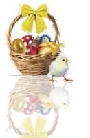 Easter Chick Fine Art Print
