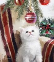 Kitten Chair Fine Art Print