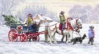 Pony Ride Fine Art Print