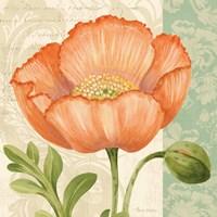 Pastel Poppies II Framed Print