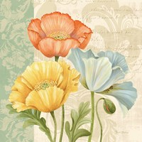 Pastel Poppies Multi I Fine Art Print