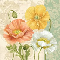 Pastel Poppies Multi II Fine Art Print