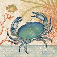 Oceana II Fine Art Print