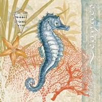 Oceana III Fine Art Print
