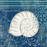 Navy Blue Spa Shells I Fine Art Print