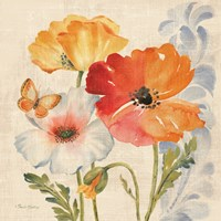 Watercolor Poppies Multi II Fine Art Print