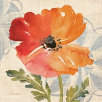 Watercolor Poppies V Fine Art Print