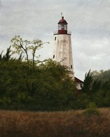 Sandy Hook Lighthouse by David Knowlton - various sizes
