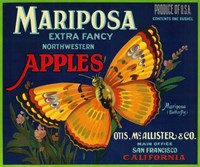 Mariposa Apples Butterfly Ad Fine Art Print