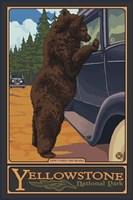 Don't Feed The Bears Yellowstone Fine Art Print