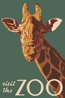Visite The Zoo Giraffe Fine Art Print