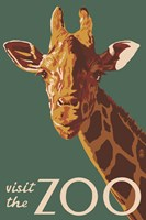 Visite The Zoo Giraffe Framed Print