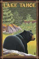 Lake Tahoe Bear Framed Print