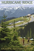 Hurricane Ridge Olympic Park Framed Print