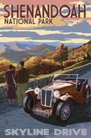 Skyline Drive Shenandoah Park by Lantern Press - various sizes