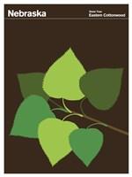 Montague State Posters - Nebraska Fine Art Print
