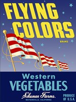 Flying Colors Brand Western Vegetables by Print Collection - various sizes, FulcrumGallery.com brand