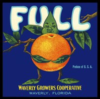Full Florida Citrus Fine Art Print