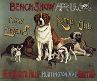 Bench Show. New England Kennel Club by Print Collection - various sizes