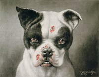 I'm a bad dog! What kind of a dog are you? by Print Collection - various sizes