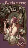 Parfumerie Violet Framed Print