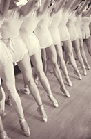 Ballet by Vintage Apple Collection - various sizes