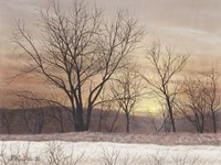Silent Sunset Fine Art Print