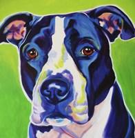 Sadie Fine Art Print