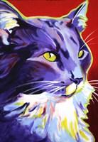 Cat Kelsier Fine Art Print
