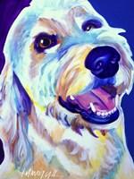 Goldendoodle Penny Fine Art Print