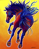 Horse Kick Up Your Heels Fine Art Print