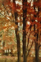 Red Forest by Mindy Sommers - various sizes