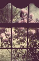 The Window by Mindy Sommers - various sizes