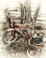 Red Tricycle by Mindy Sommers - various sizes