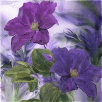 Purple Dream IV Fine Art Print