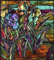 Candy Coated Irises by Mindy Sommers - various sizes