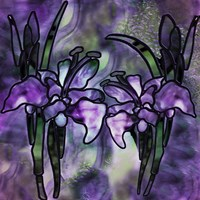 Stained Glass Orchids Fine Art Print