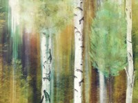 Morning Trees by Mindy Sommers - various sizes