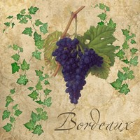 Bordeaux by Mindy Sommers - various sizes