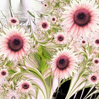 Water Sunflowers by Mindy Sommers - various sizes