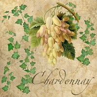 Chardonnay by Mindy Sommers - various sizes
