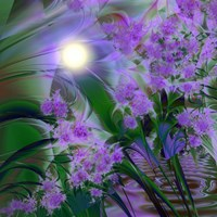 Purplescape by Mindy Sommers - various sizes
