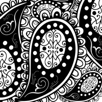 Paisley Party B/W by Mindy Sommers - various sizes