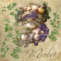 Merlot by Mindy Sommers - various sizes