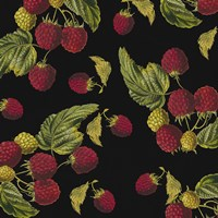 Nature's Bounty -  Raspberries by Mindy Sommers - various sizes