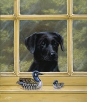 By the Window by John Silver - various sizes