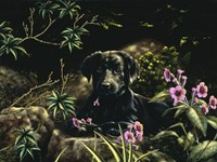 In Amongst the Flowers by John Silver - various sizes